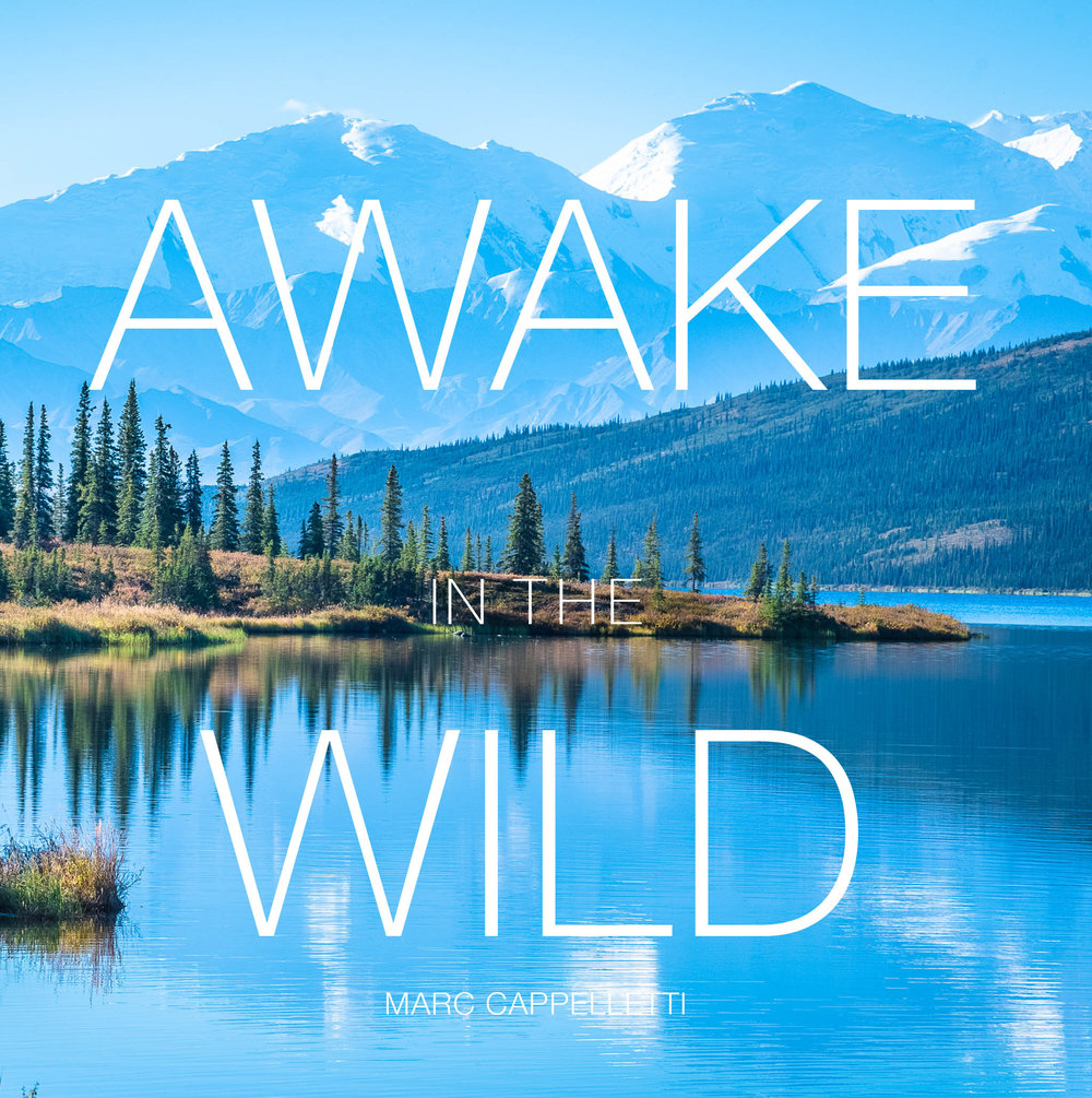 awake jpeg files Cover CROP.jpg