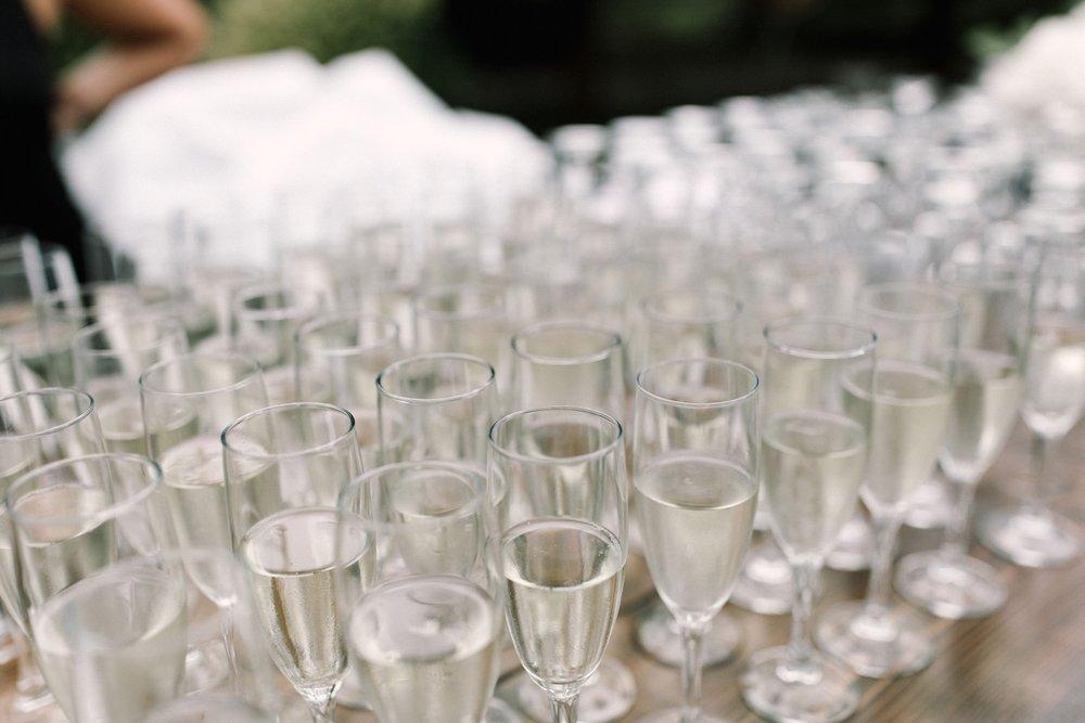 Michigan Frontyard Lake Wedding - Lauren Crawford Photography-80.jpg