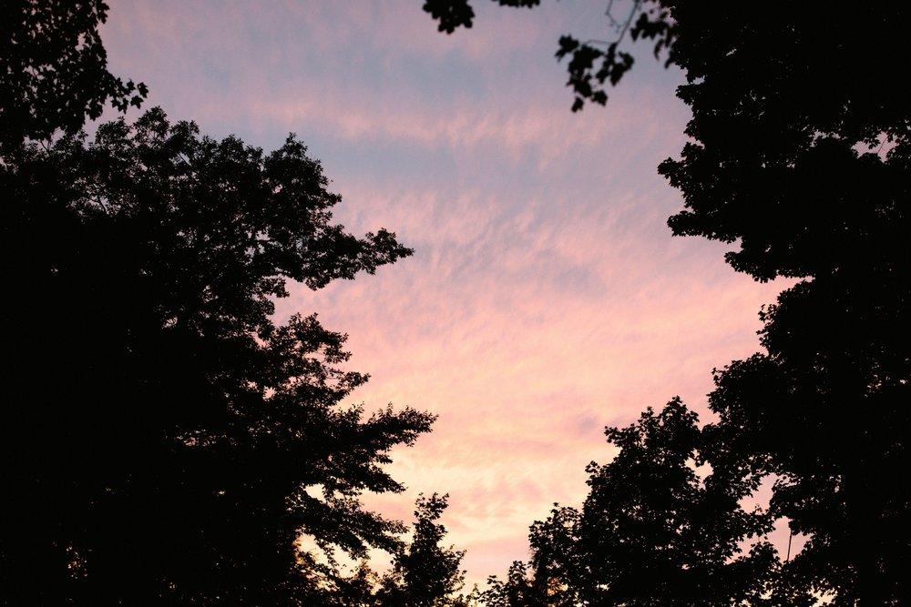 Michigan Frontyard Lake Wedding - Lauren Crawford Photography-812.jpg