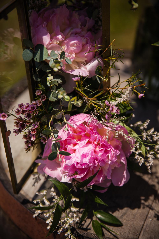 PhotographybyAmandaMorgan-blog-44.jpg