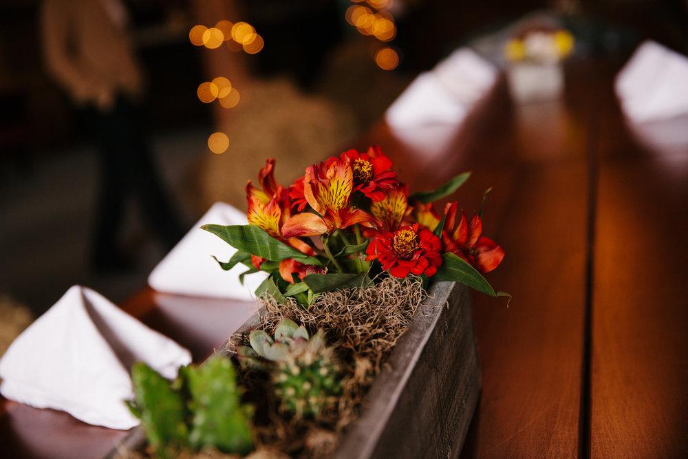 Glimmerstone-Mansion-Vermont-Wedding-Photography-Amanda-Morgan-103.jpg
