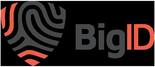BigID_Logo.png