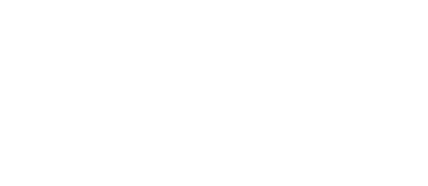 Synapse Strength and Conditioning