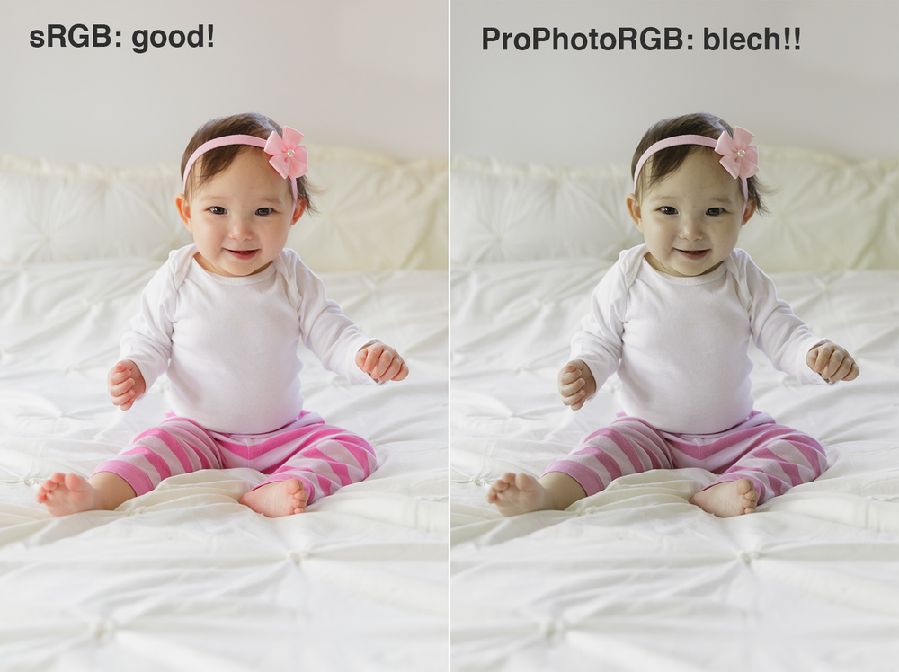 sRGB vs. ProPhotoRGB color profiles | Lightroom mentoring and tutorials