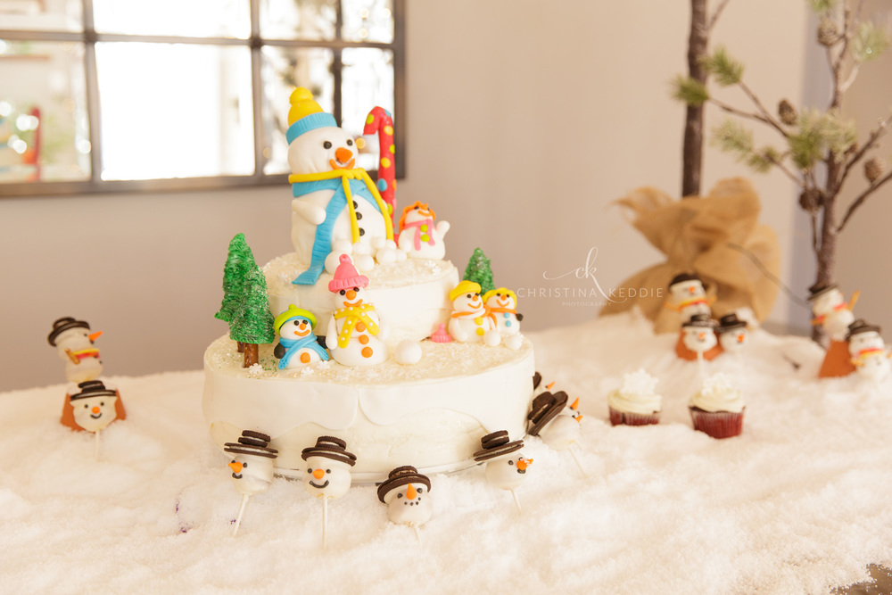 First birthday party winter wonderland cake display | Christina Keddie Photography | Princeton NJ event photographer