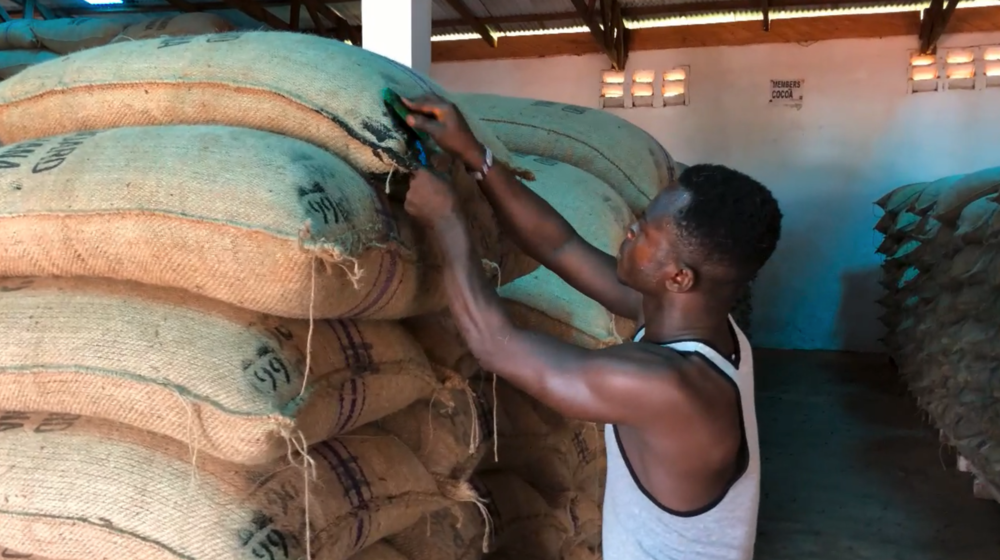 The First Step to Traceability: Stenciling Batch Numbers on Bags of Cocoa at a Depot in Ghana