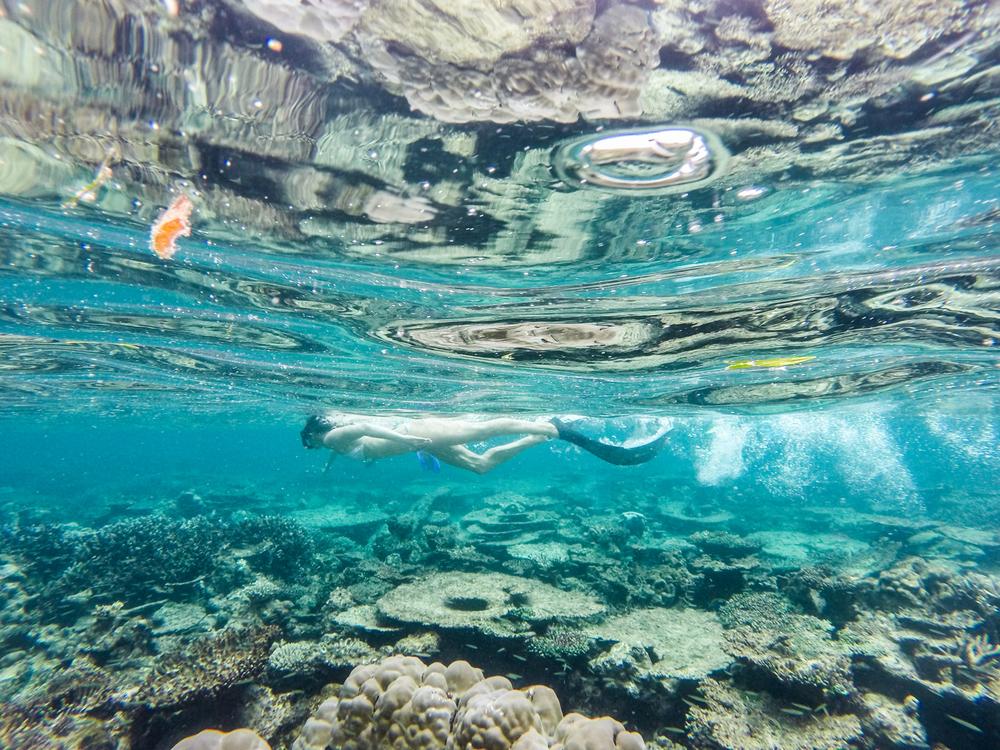 gopromaldives-3.jpg