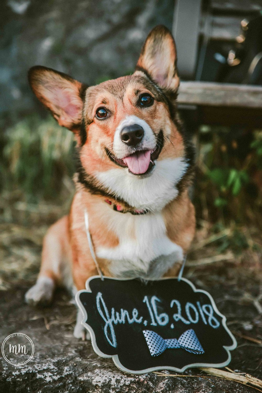 SaveTheDate-MicaMijaresPhotography-42.jpg