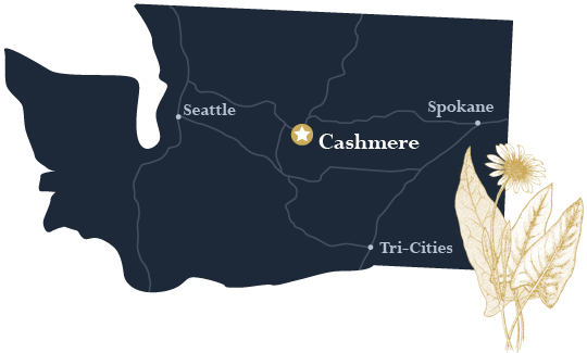 Cashmere is located in the heart of Washington State.