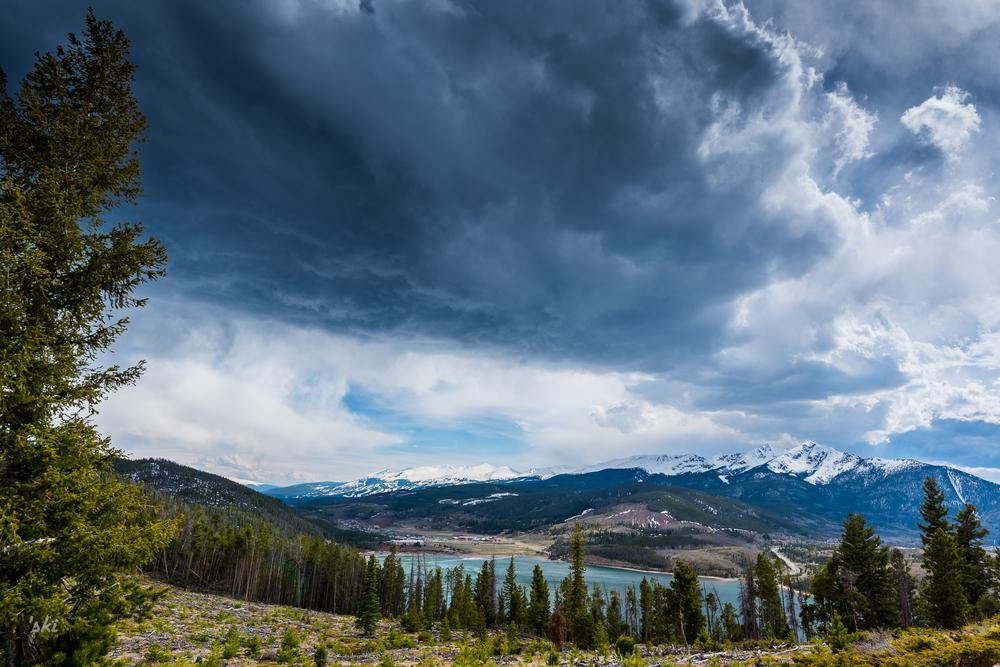 Blanket over Breck