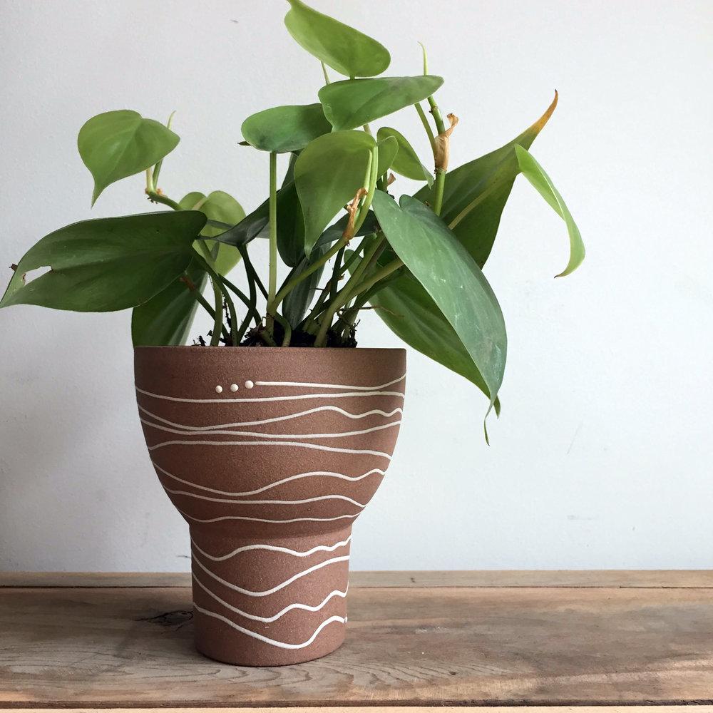 chalice_planted.jpg
