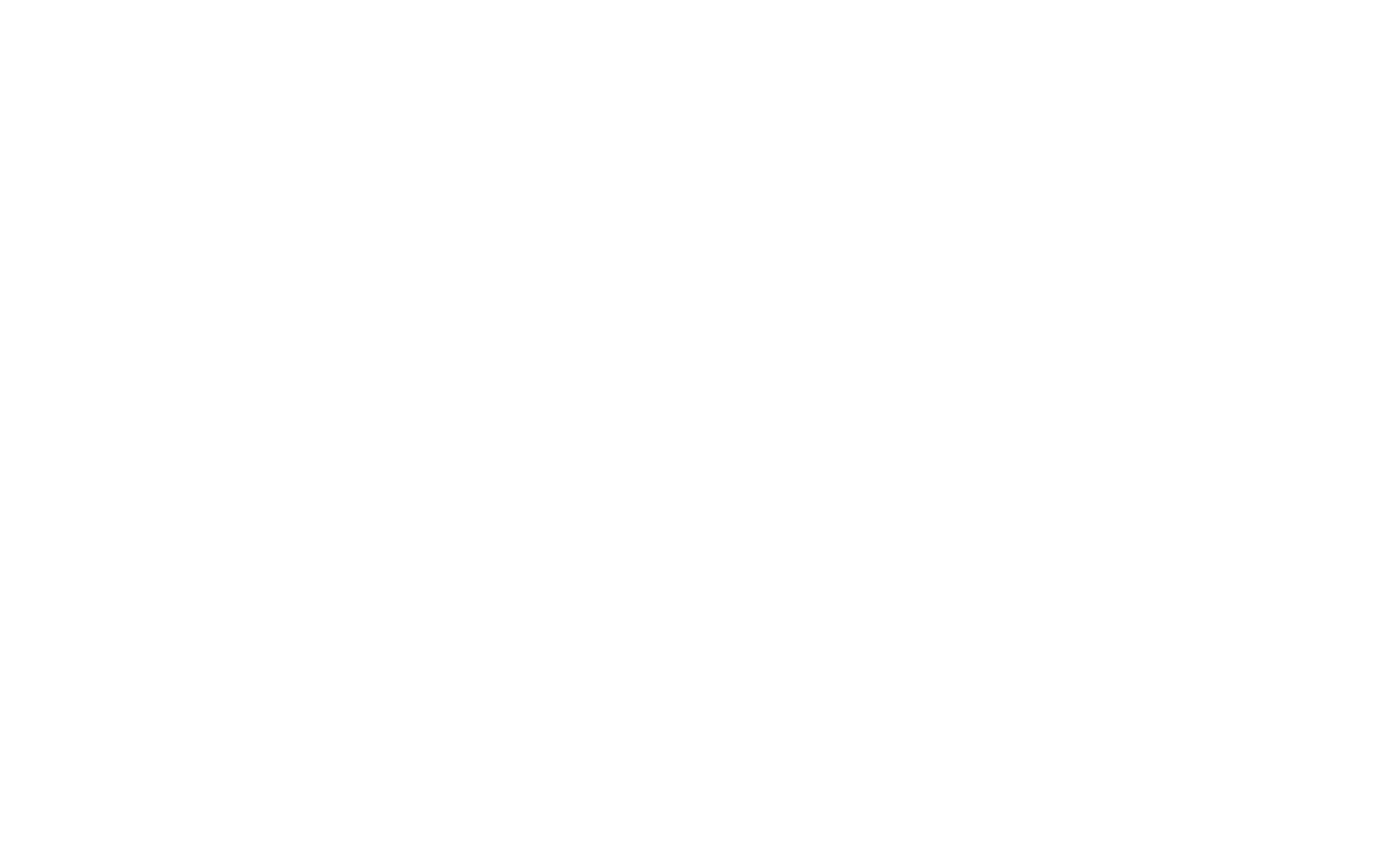 We Fly Drones