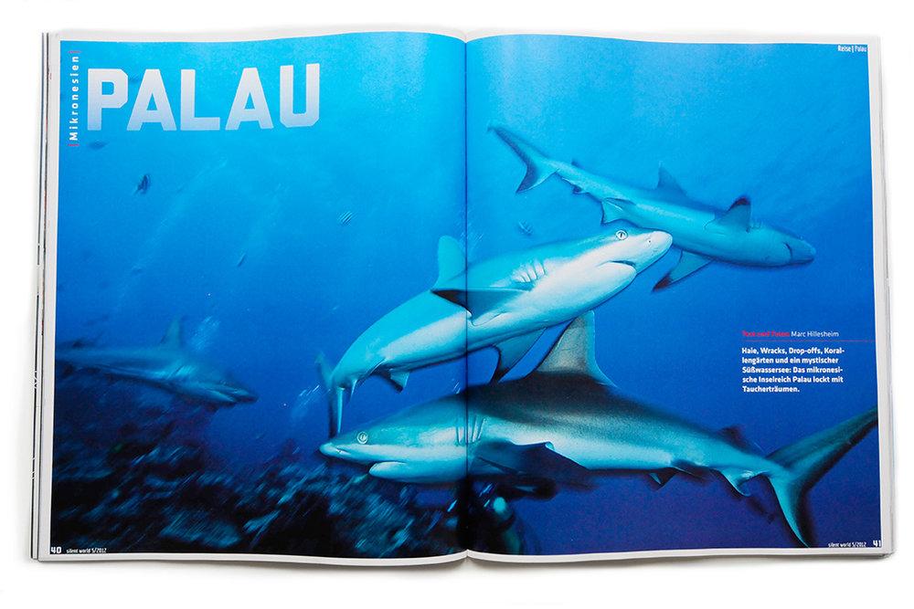 Palau_Mag_Art.jpg
