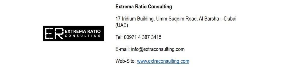 extra ratio consulting .jpg