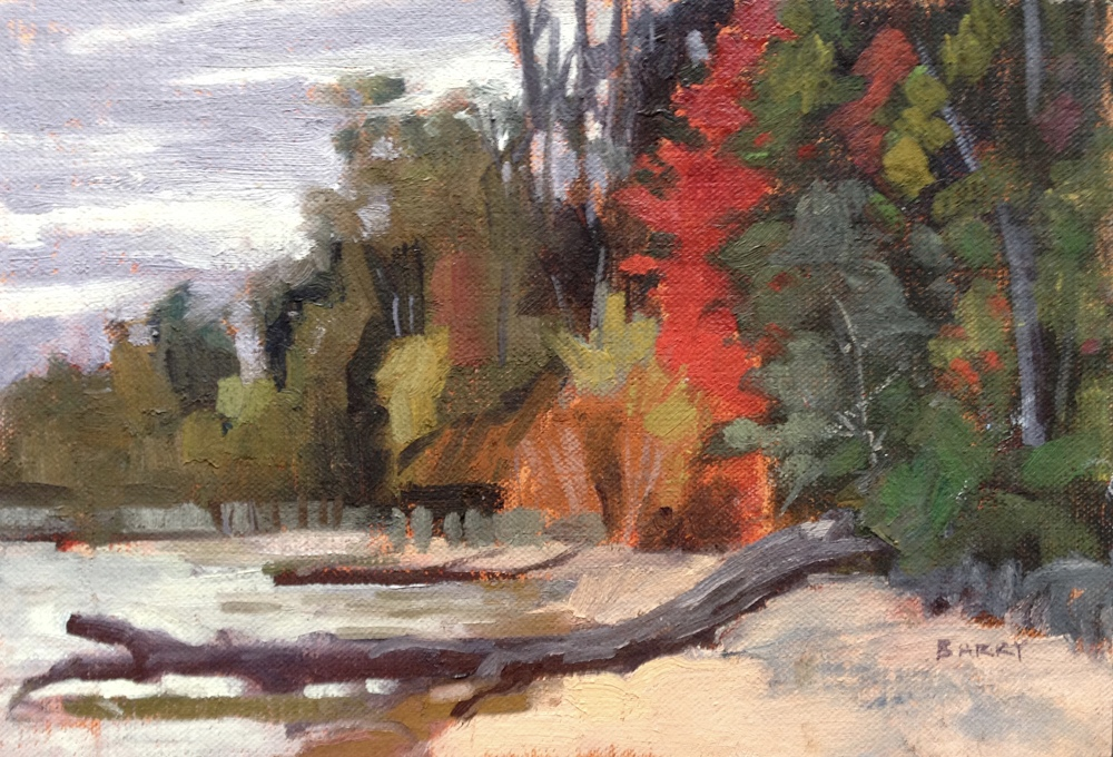 Oil, 6x9.  Cove Point Beach, Lusby, MD.  200.