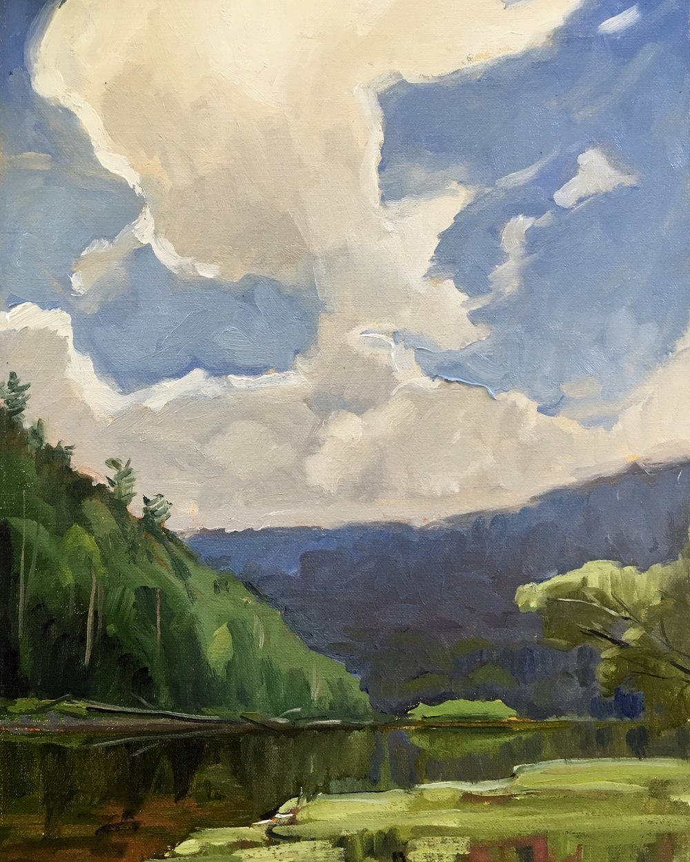 Greenbrier River, WV     16x12 in.  Oil on linen panel    NA