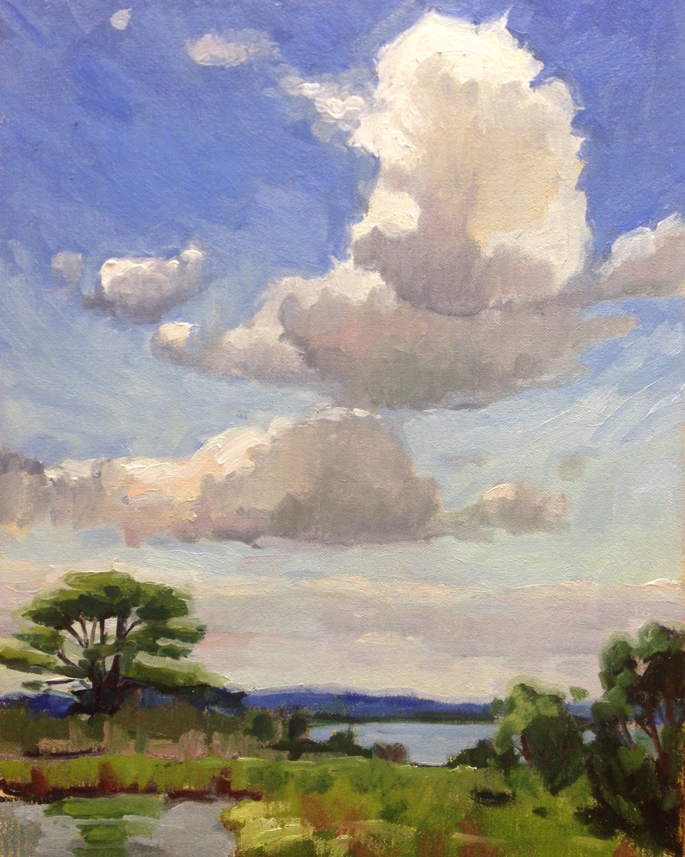 Looking Up     11x14 in.  Oil on linen panel     350.