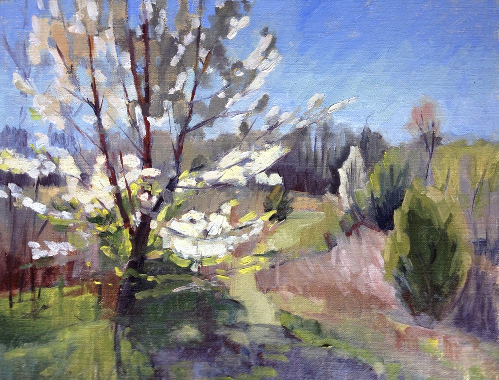 Hidden Spring     11x14 in.  Oil on linen panel     350.