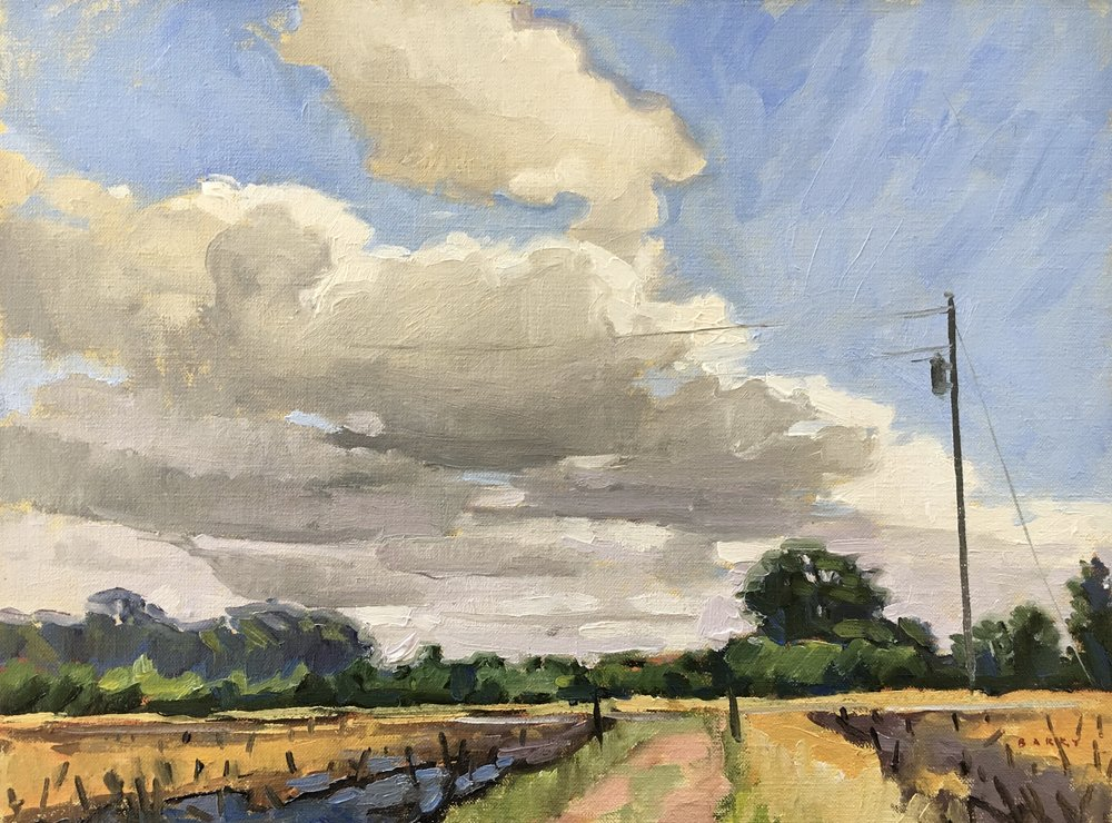 Past the Cut Corn     12x16 in.  Oil on linen panel     400.
