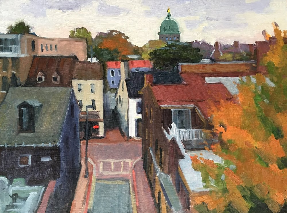 Annapolis Rooftops