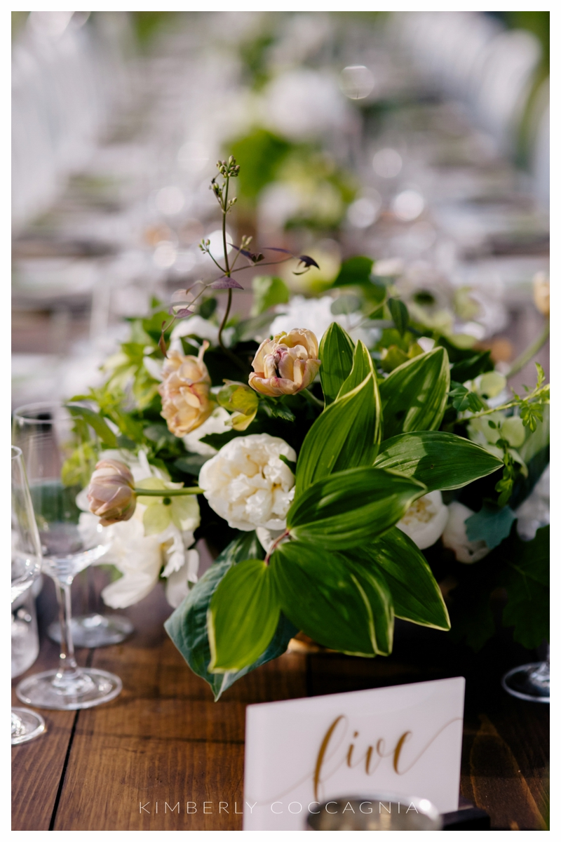 ©kimberly-Coccagnia_coppola-creative-calligraphy_southwood-wedding_hudsonvalley165.jpg