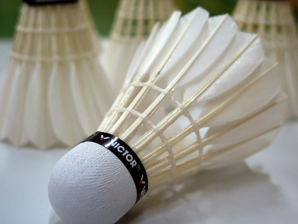 Badminton: Name: Michael Reid Job Title: Relationships Manager Click here to email