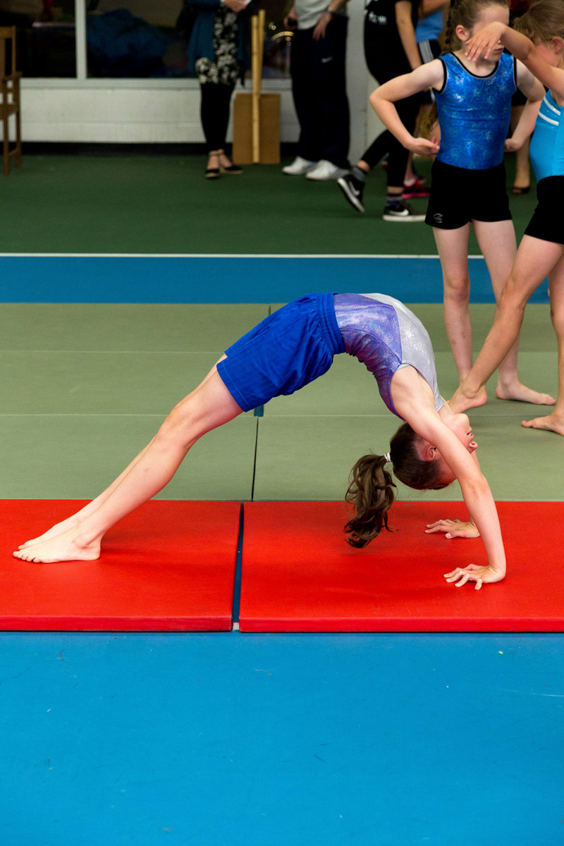 Gymnastics: Primary School Support Offer