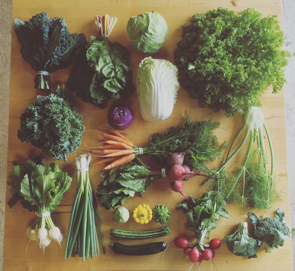 overhead veg