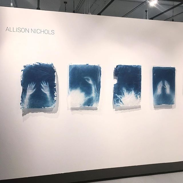 Here's a peak at a current body of work. Currently hanging in the William Harris Gallery at RIT as part of the first semester MFA work share. #cyanotype #photogram #prussianblue #ritphoto #feministart #blue #makeart #photographerwithoutacamera #womenartists #photography #gallery #potassiumferricyanide #makeprintsnotpixels #processart #experimentalart #trace #altprocess #alternativeprocess #historicalprocess #annaatkinsvibes