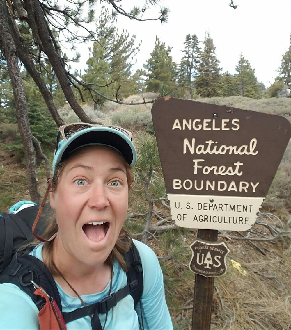 Entering into Angeles National Forest!