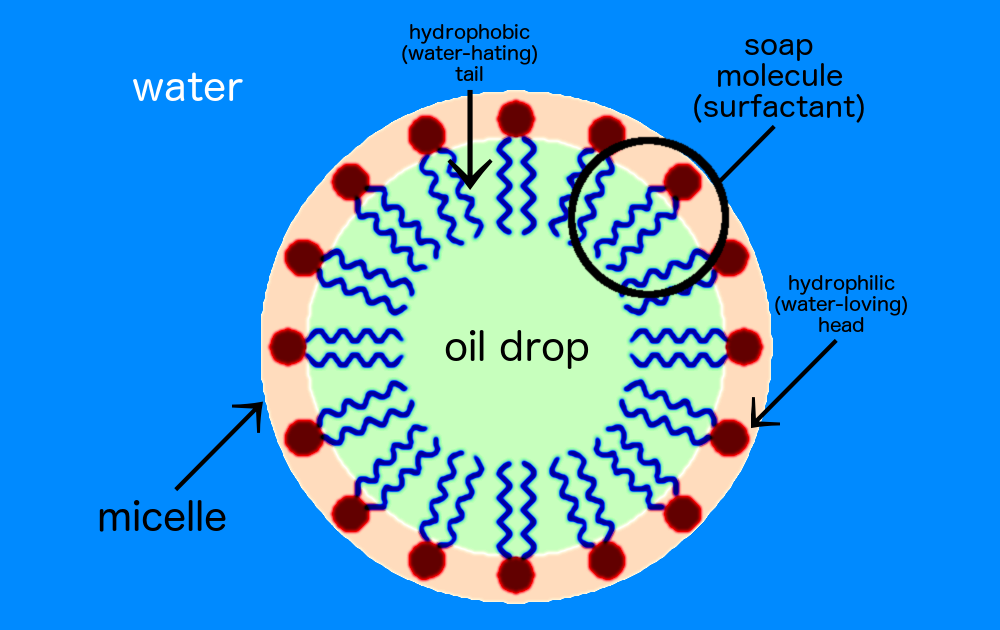 A soap micelle.