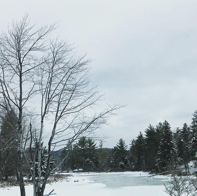 #newenglandphotography #massachusettsphotographer #winter