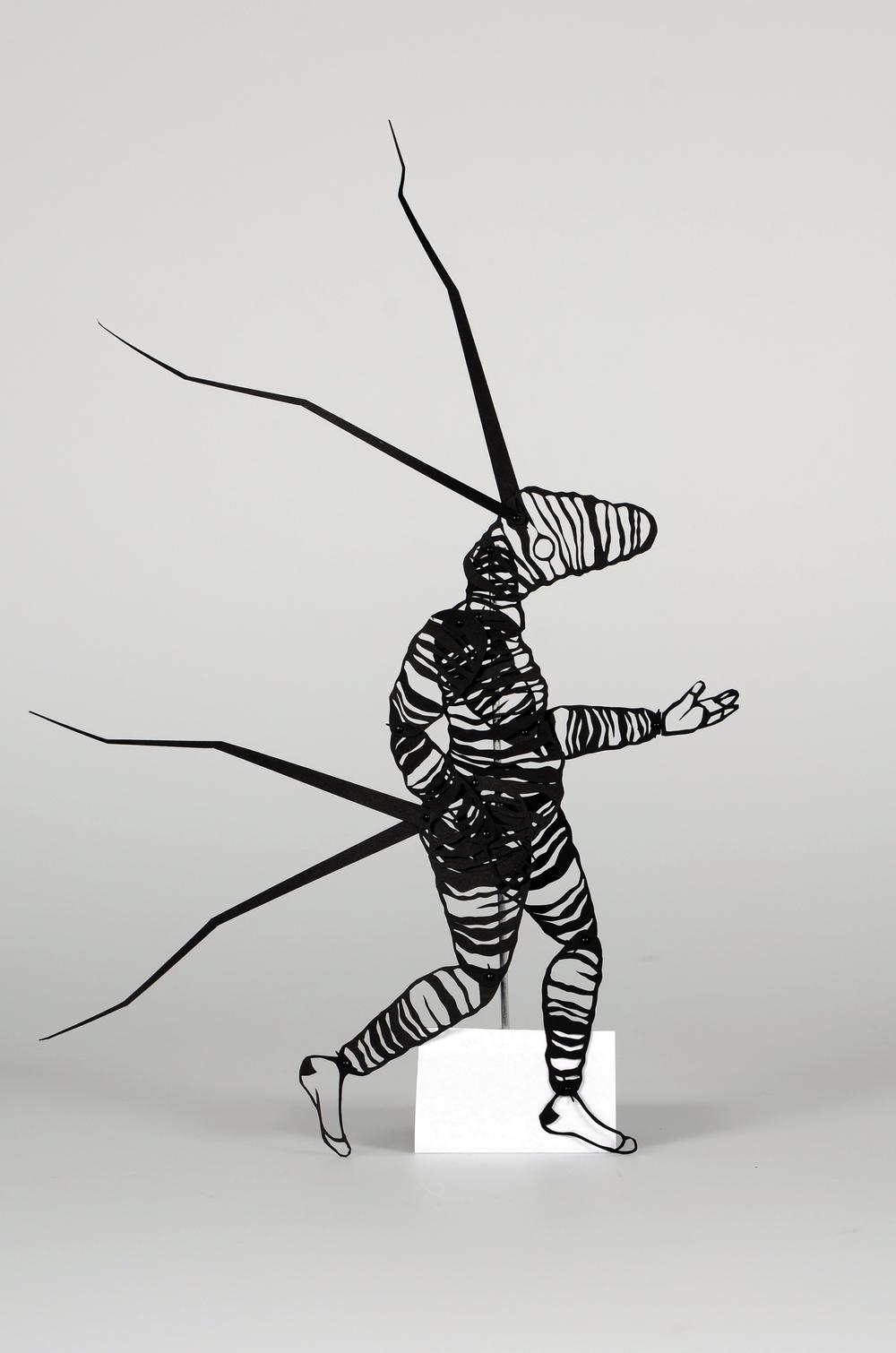 Imaginal Stasis Catter Sapien