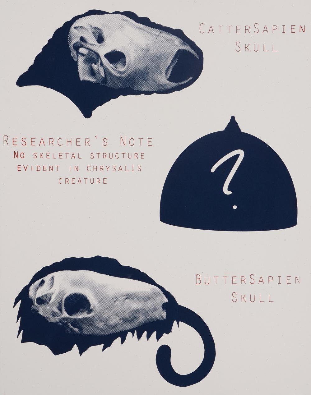 Lepidopter Sapien Skulls