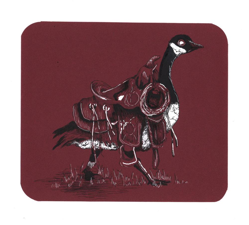 Saddle Goose
