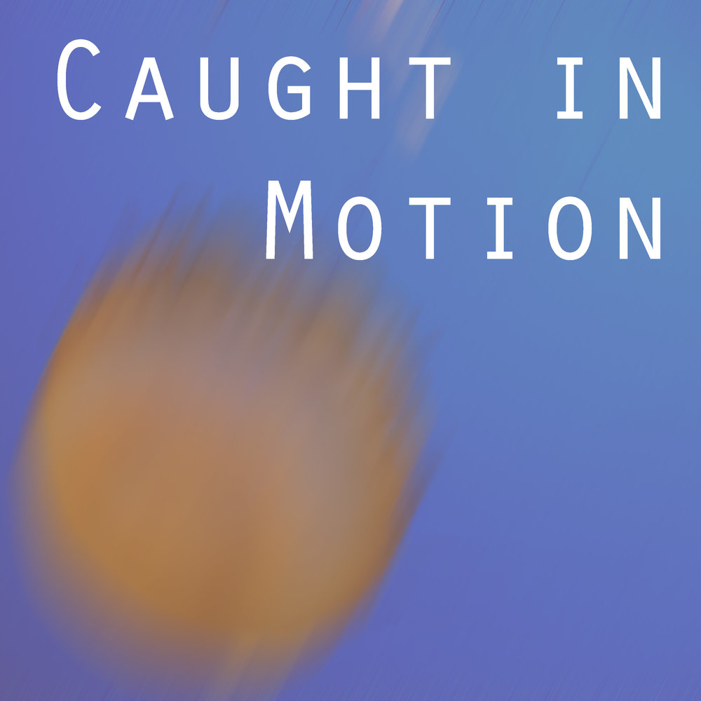 Caught in Motion  November 1 – December 2, 2014  Arterie Fine Arts  Naperville, Illinois