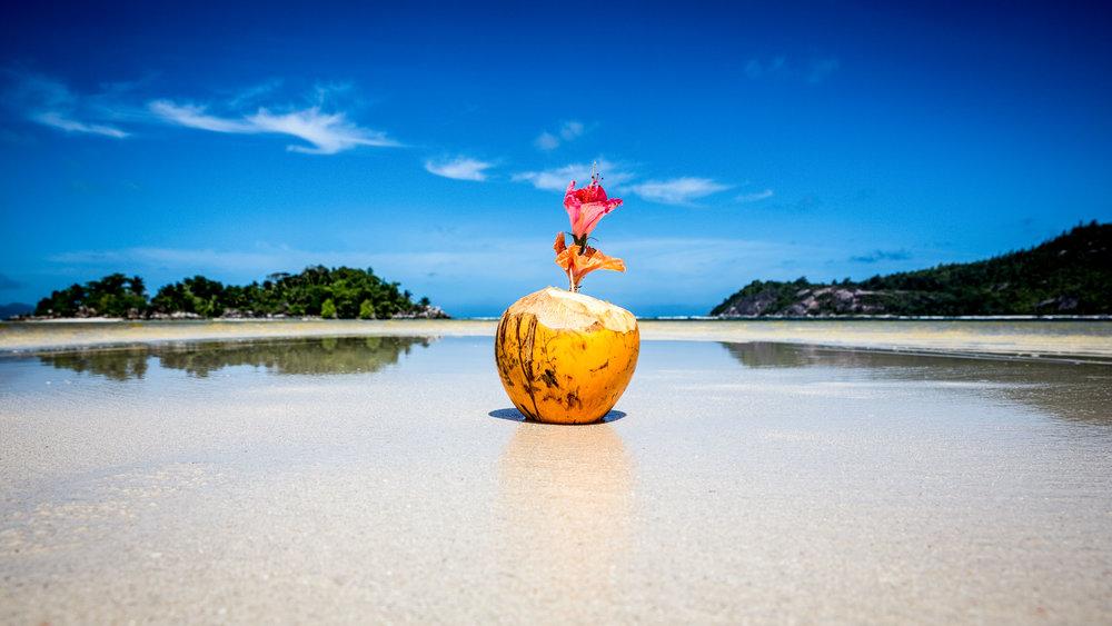 coconut-seychelles.jpg