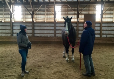 Tom working with Bud at the Danique Henderson ground work clinic