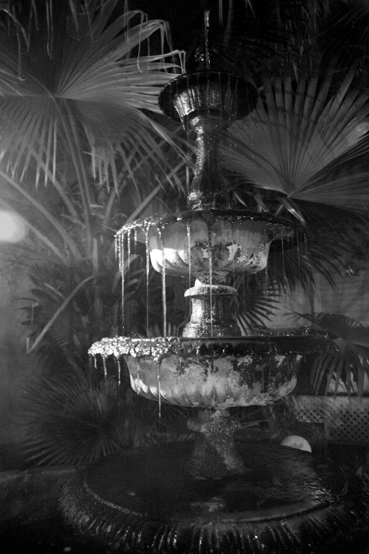 Mossy Fountain Savannah.jpg