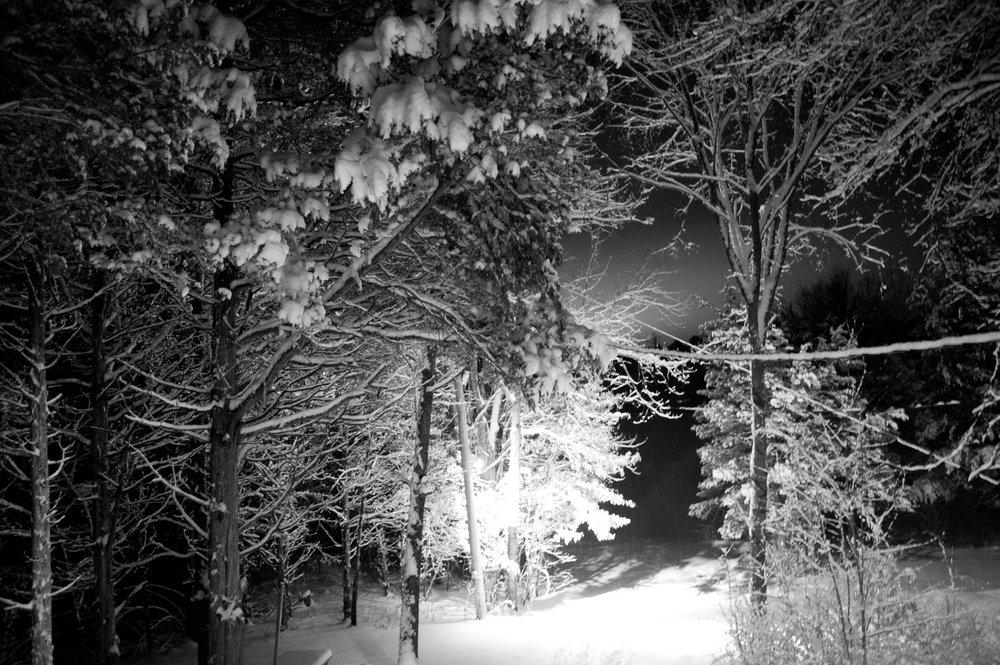 snow outside of house in woods030.JPG
