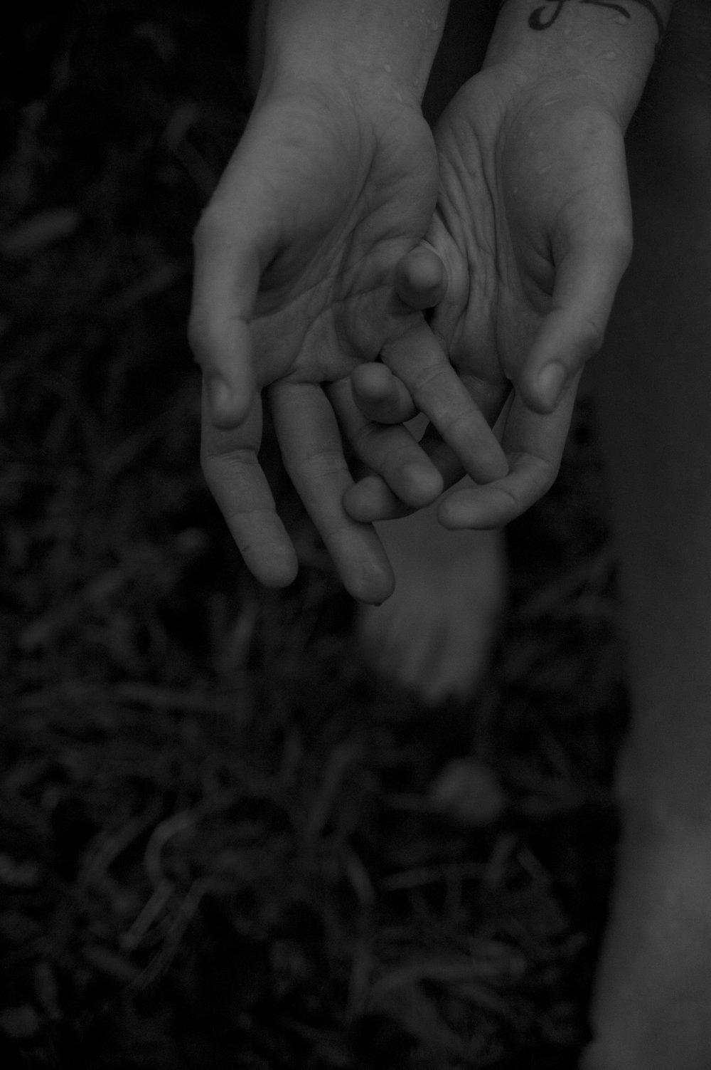 Roan hands 001.jpg