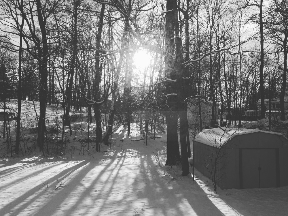 April winter wonderland