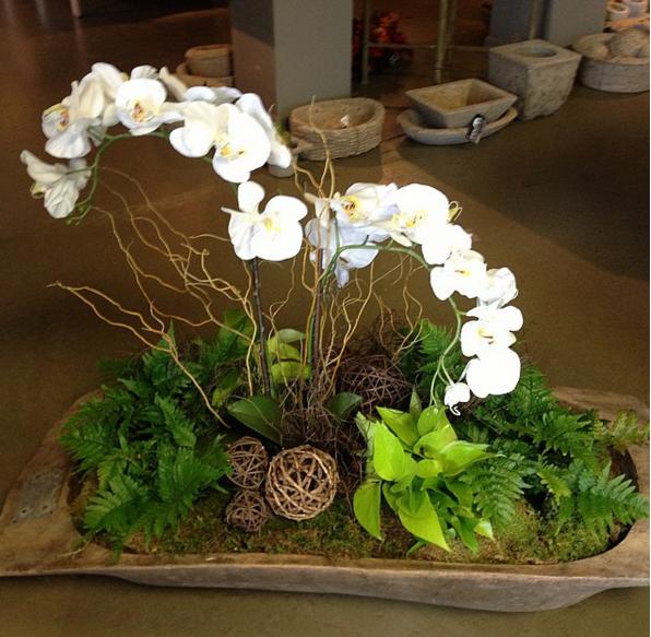 Garden, Gardening, Dough Bowl, Orchids, Pots, Containers, Pretty Pots,
