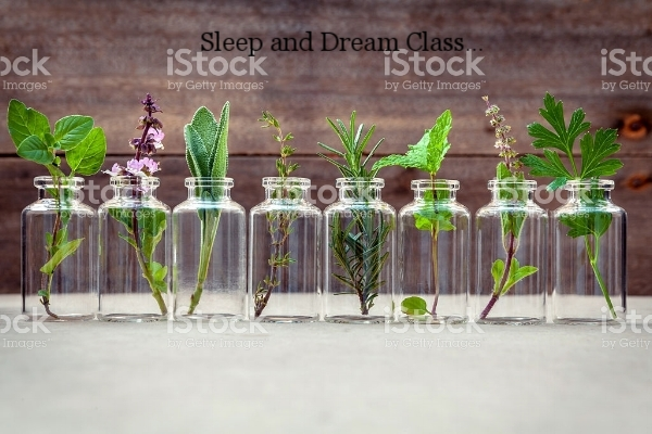 Want more information about my sleep and dream class?