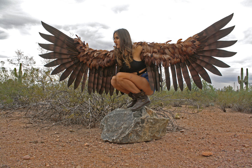 Harpy Wings - $800 to start; Shown $1250