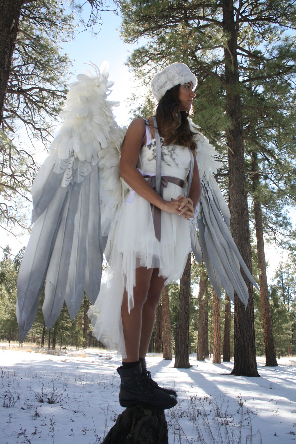 Animatronic Wings -  $2000 and up