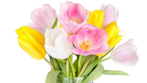 El Reto de las Flores. Tu nivel de tolerancia al color.