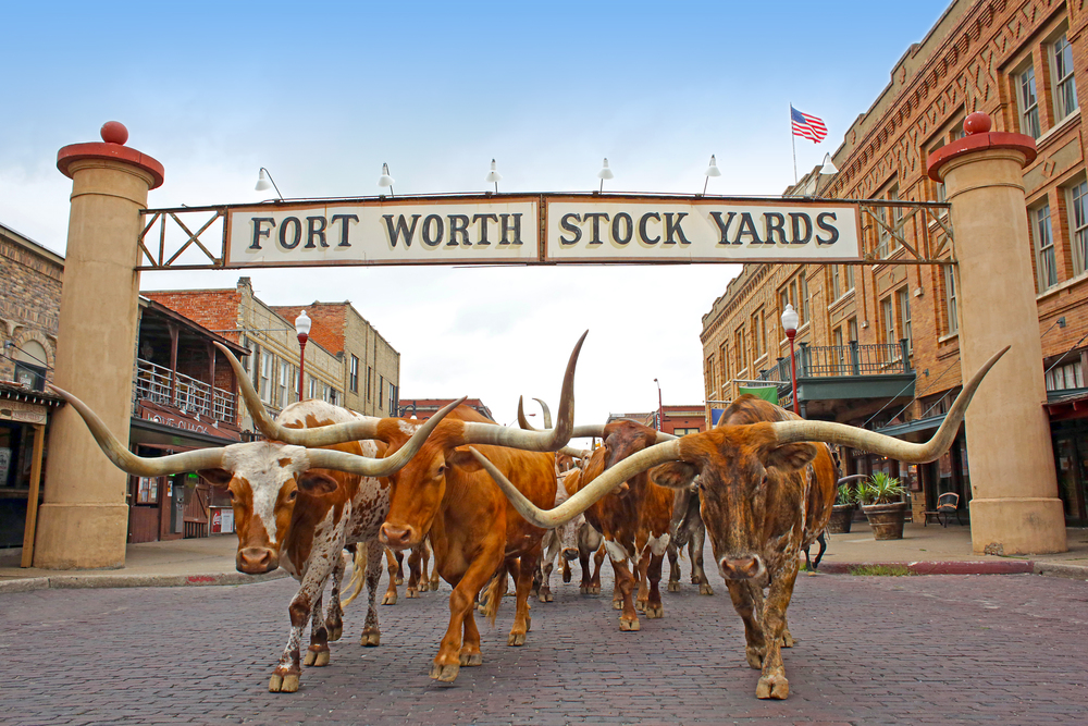 BONUS 11/Fort Worth Stockyards