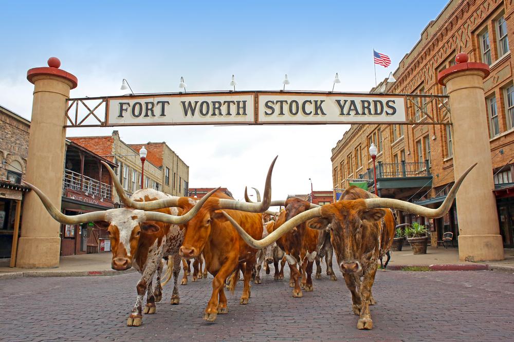 BONUS 11/Fort Worth Stockyards
