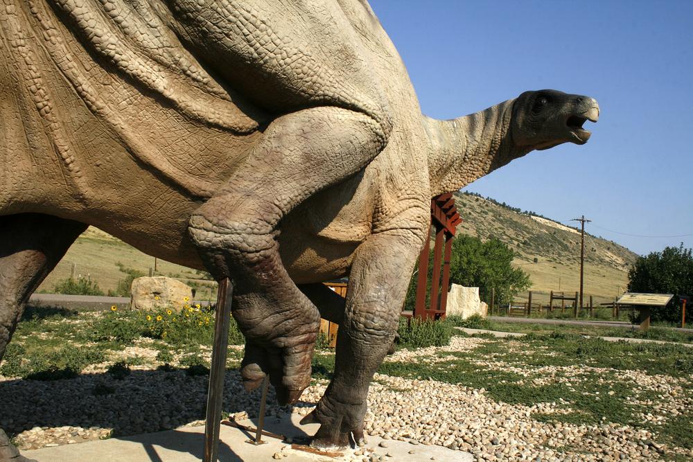4/Dinosaur Ridge